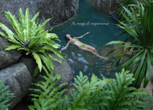 ทามาไรด์ สปริงส์ สปา รีสอร์ท เกาะสมุย จ.สุราษฏร์ธานี Tamarind Springs Spa Resort, Koh Samui, Suratthani