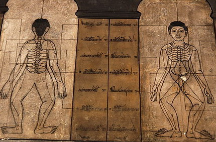 โรงเรียนแพทย์แผนโบราณวัดพระเชตุพนฯ (วัดโพธิ์) Watpo Thai Traditional Medical School