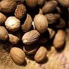 น้ำมันหอมระเหยบริสุทธิ์: นัทเมก (ลูกจันทน์เทศ) Nutmeg (Myristica fragrans - Indonesia)