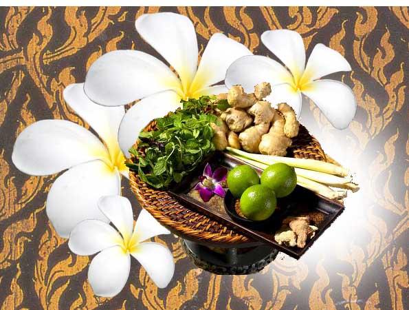 ประกาศรับสมัครพนักงานสปา: บ้านชมนาด สมุนไพรสด แอนด์ สปา (คลองสี่ ปทุมธานี) (BanChomNard Herb Spa and Aroma)