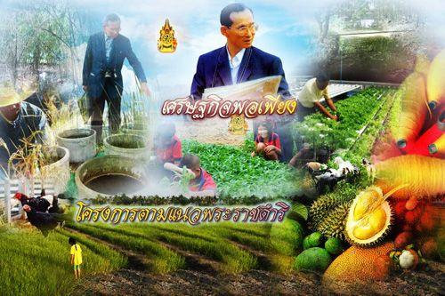 """พระราชกรณียกิจของรัชกาลที่ 9 """"มหาราชของปวงประชาไทย"""" """"พระภูมิพลมหาราช"""""""