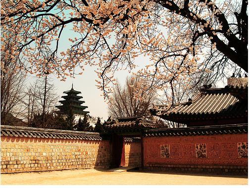 ประกาศรับสมัครพนักงานสปา: งานต่างประเทศ (โซล ประเทศเกาหลี)