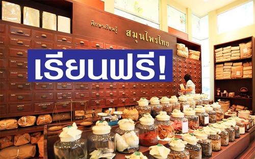 เรียนสมุนไพรฟรี-สอนสมุนไพรฟรี:- ทุนเรียนฟรี หลักสูตรเภสัชกรรม-หลักสูตรเวชกรรม-หลักสูตรการแพทย์แผนไทย