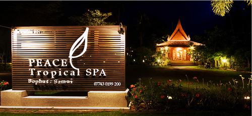 ประกาศรับสมัครพนักงานนวดสปา: Peace Tropical Spa พีชทรอปิคัล สปา (เกาะสมุย จ.สุราษฎร์ธานี)