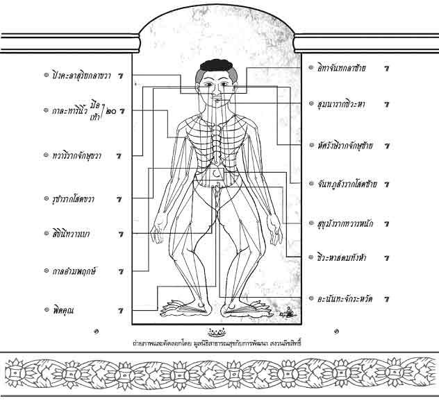 """ตำราแพทย์แผนโบราณ """"เส้นประธานสิบ"""" หลักสำคัญของวิชาการนวดไทย"""